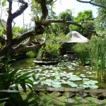 Ananda Cottages Pond