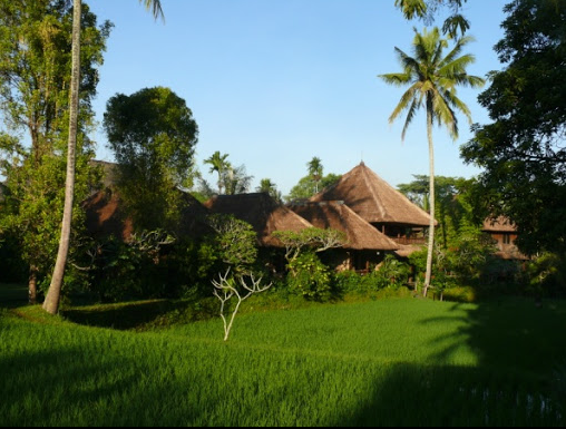 Ananda Cottages in the Rice Fields