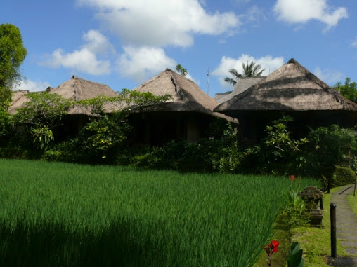 Ananda Cottages in Picturesque Balinese Landscape