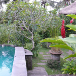 Beautiful Pools at Ananda