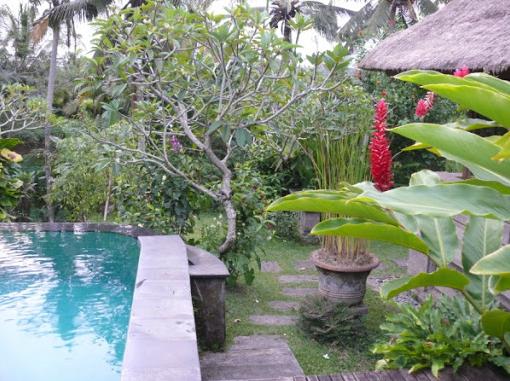 Beautiful Pools at Ananda