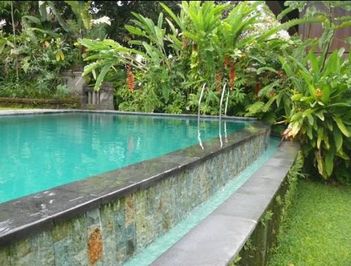 Infinity Pool at Ananda