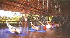 people practicing yoga at the ananda cottages