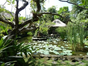 Ananda Cottages and Yoga Retreats-Bali